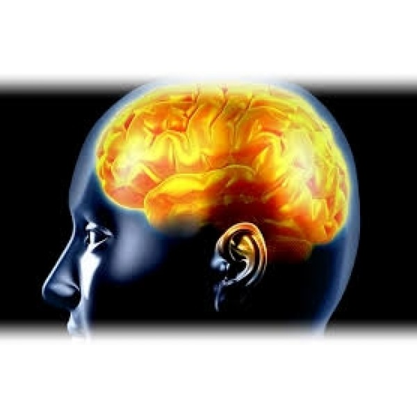 Clínica Psiquiátrica para Depressão Preço Baixo na Água Branca - Depressão Como Curar