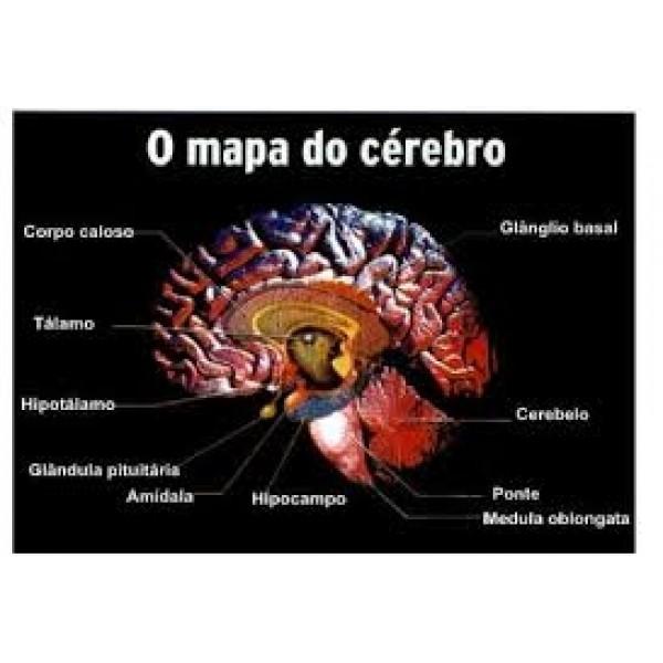 Clínicas Psiquiátricas para Depressão Preços no Rio Pequeno - Como Curar a Depressão