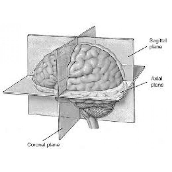Como Encontrar Psiquiatria para Internação em Aricanduva - Clinica Psiquiatrica em SP