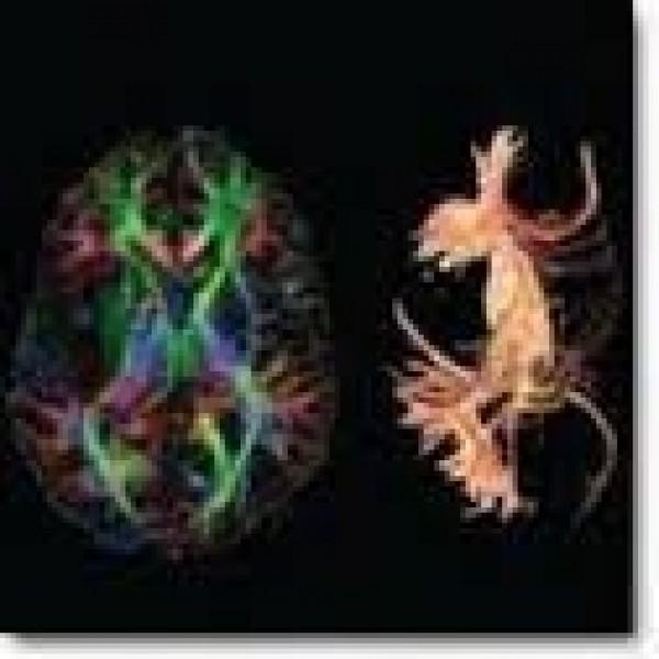 Psiquiatria para Internação Menor Valor em Poá - Clínica de Psiquiatria
