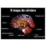 Clínicas psiquiátricas para depressão preços no Jardim São Paulo