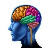 Terapia alternativas para depressão preço acessível em Alphaville